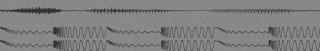header-greywaveform3-melodiefabriek